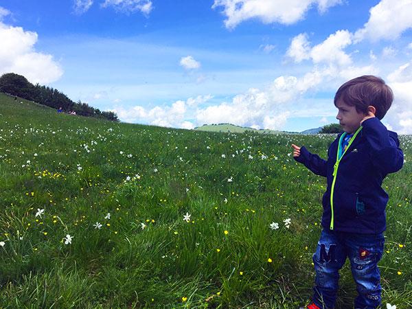 prato fiori bambini