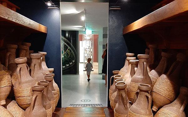 Museo dell Olivo dei Fratelli Carli