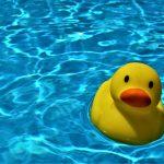 piscine estate