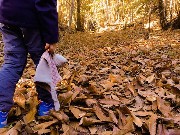 bambino nel bosco in autunno