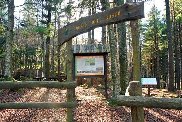 museo del bosco val d'aveto
