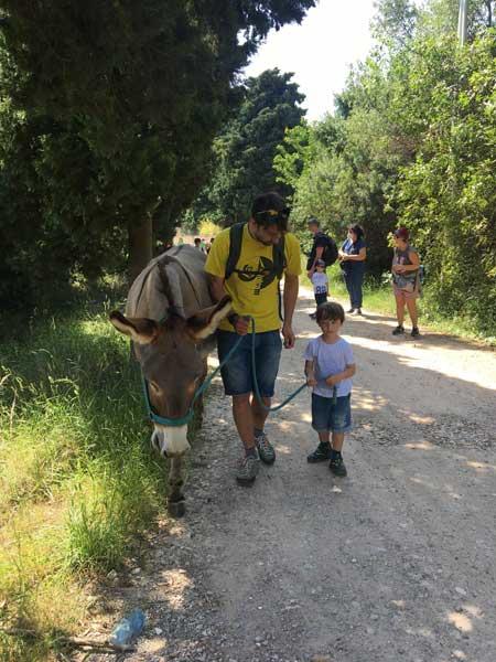 papà e figlio per trekking asini liguria asinolla